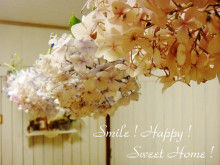 Smile! Happy! Sweet Home!