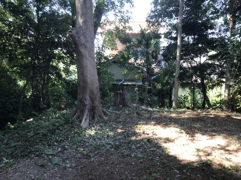 庭木剪定芝刈り
