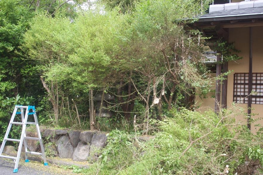庭にフェンスをDIYで作る