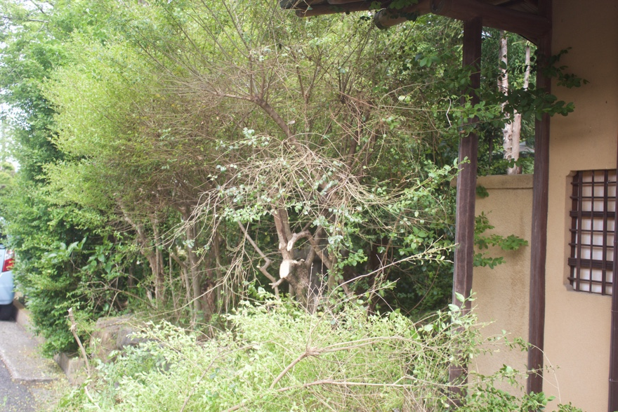 庭にフェンスをDIYでつくる